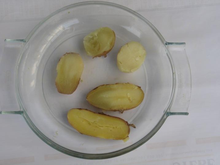Degustacija kuhanega krompirja